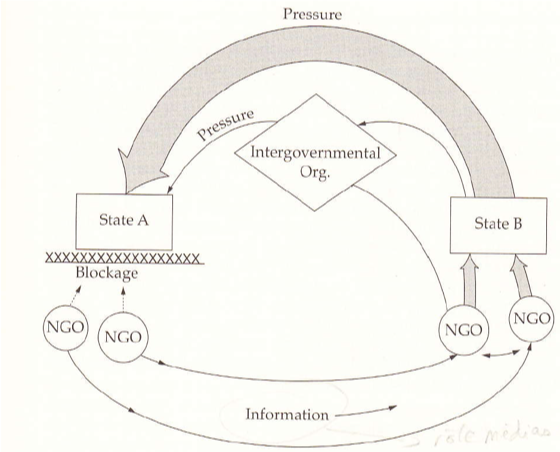 Schéma du boomerang de Margaret Keck & Kathryn Sikkink (Activists beyond Borders, 1998)